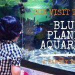 Our Visit to the Blue Planet Aquarium