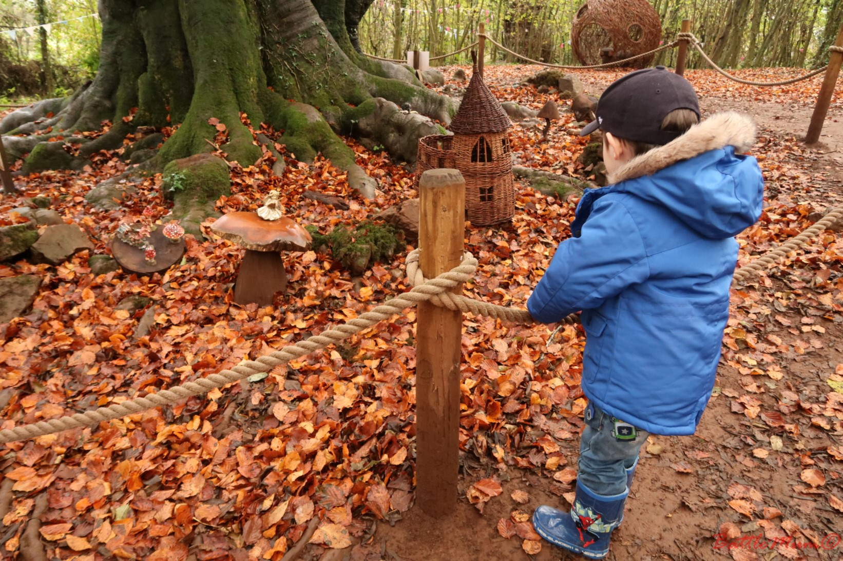 hunting a gruffalo at the mountain view ranch