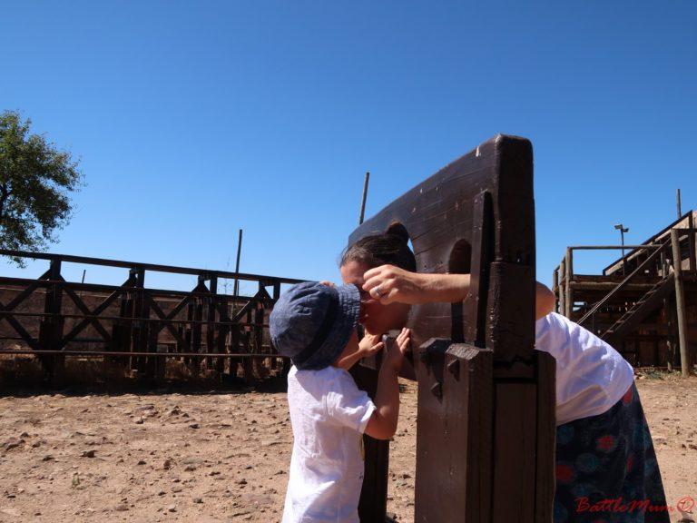 dragon hunting adventure at castro marim - battlemum in the stocks, getting a kiss from battlekid