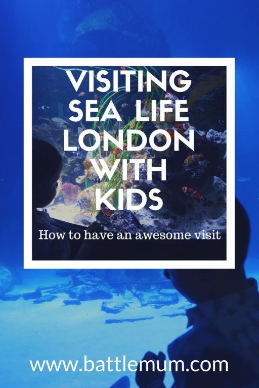 Visiting Sea Life London With Kids and How To Have an Awesome Visit. With hints and tips to make your visit an awesome one.