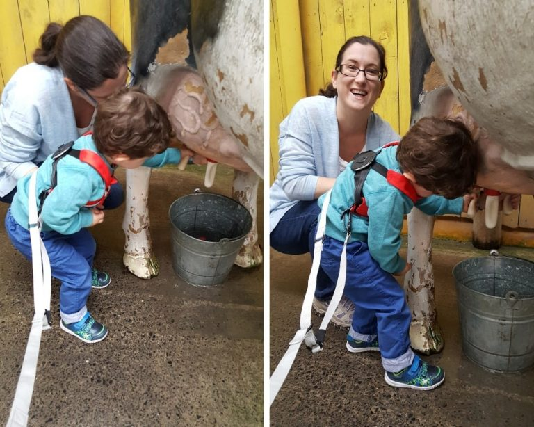 Mum and son milking a model cow at Folly Farm