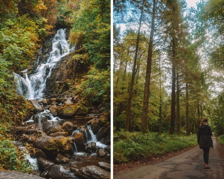 Killarney National Park in Ireland is a place of natural stunning beautty. This collage shows a waterfall and forest walk found within the park.