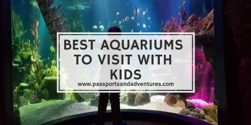 Top Aquariums To Visit With Kids In The World