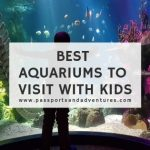 Best Aquariums To Visit With Kids