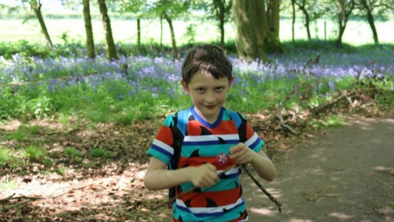 Boy with sticks in his hand with a carpet of bluebells behind him
