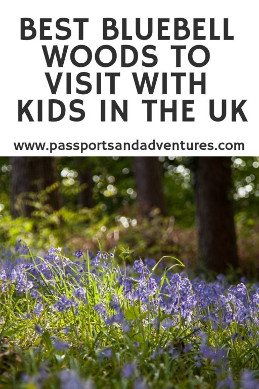Best Bluebell Woods To Visit With Kids