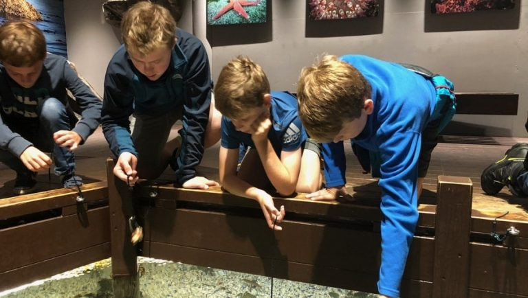Teen boys enjoying a game of fishing in an open tank in the Alesund Aquarium, norway