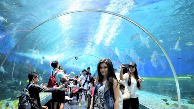 Bella Wanderlust in the shark tunnel of the Manila Ocean Park Aquarium