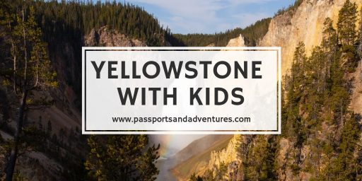 Yellowstone With Kids - A Complete Guide to Visiting the National Park With Kids