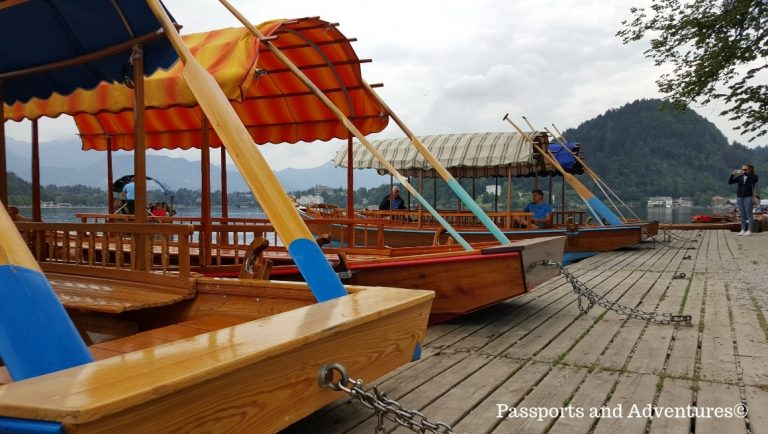 The traditional plenta boats lined up on the banks of Lake Bled