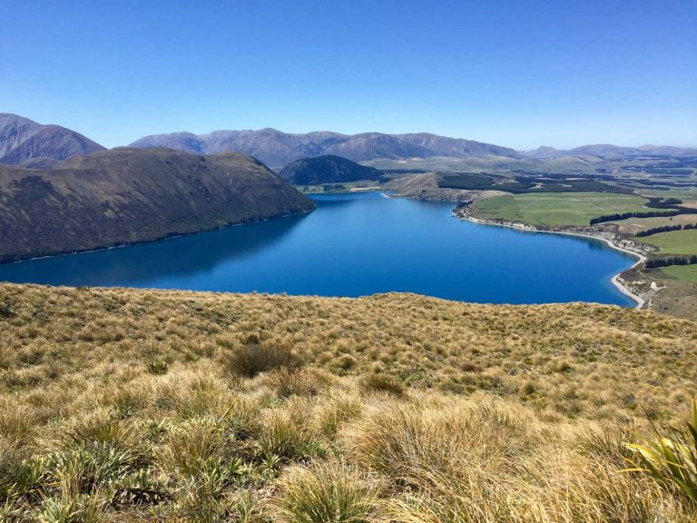 A view from a hill overlooking a lake in New Zealand