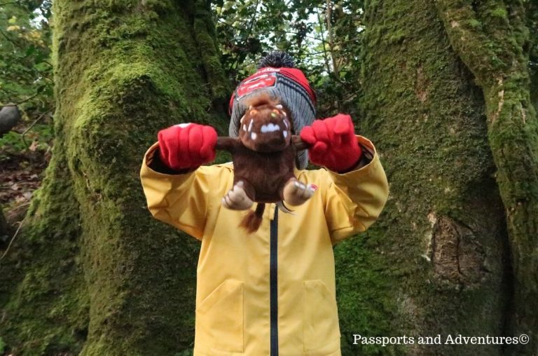 A little boy in a yellow raincoat and red gloves and hat holding a Gruffalo teddy in front of him in a forest