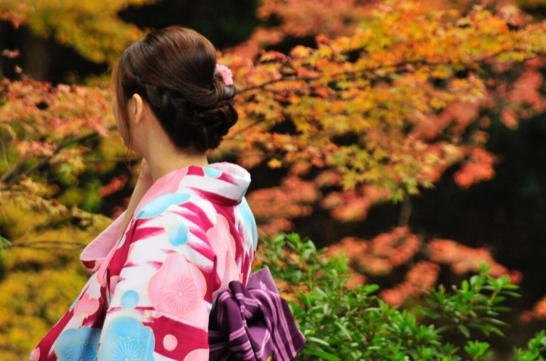 A picture of a Japanese lady wearing a kimono in front of Japanese Acer trees