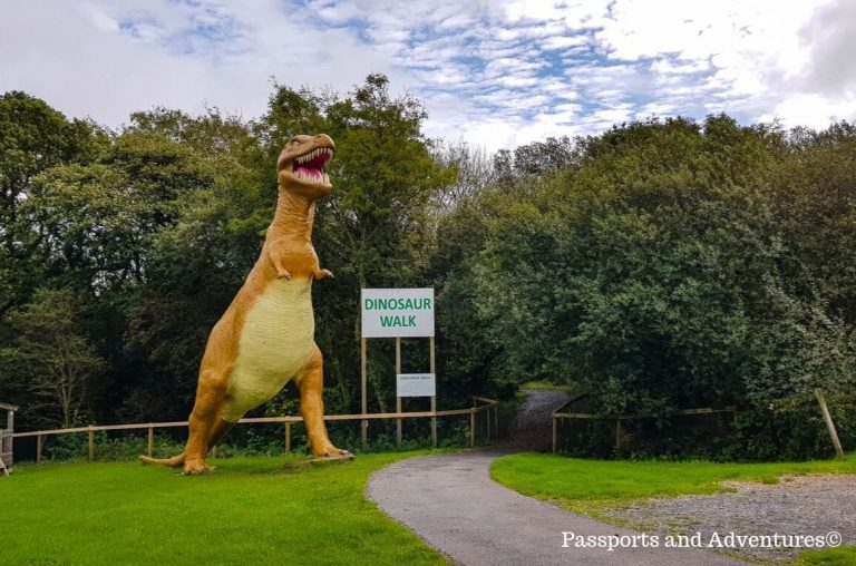 A T-Rex model at Dinosaur Park in Tenby, West Wales