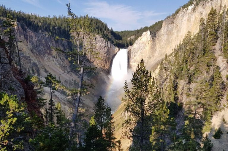 The Lower Falls of Yellowstone cascading over the mouth of the river