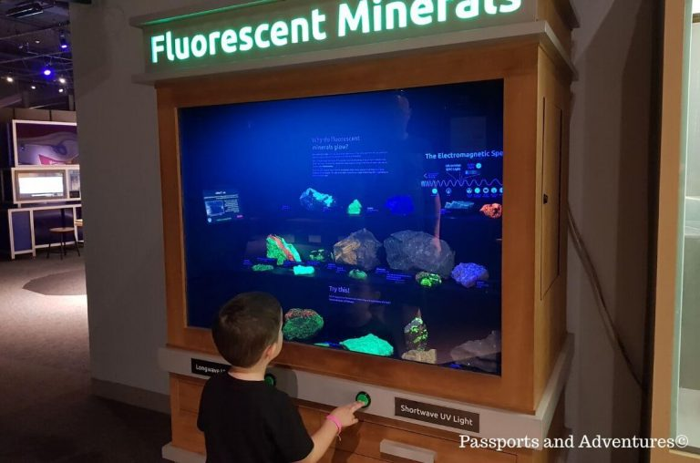 A young child at a Fluorescent Minerals display in the Oregon science museum, Portland