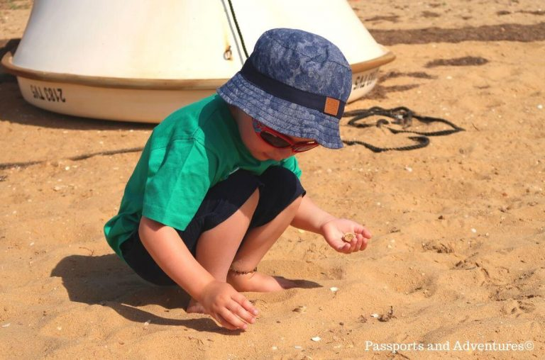 A little boy in short, a t-shirt and sun hat collecting shells on a sandy beach