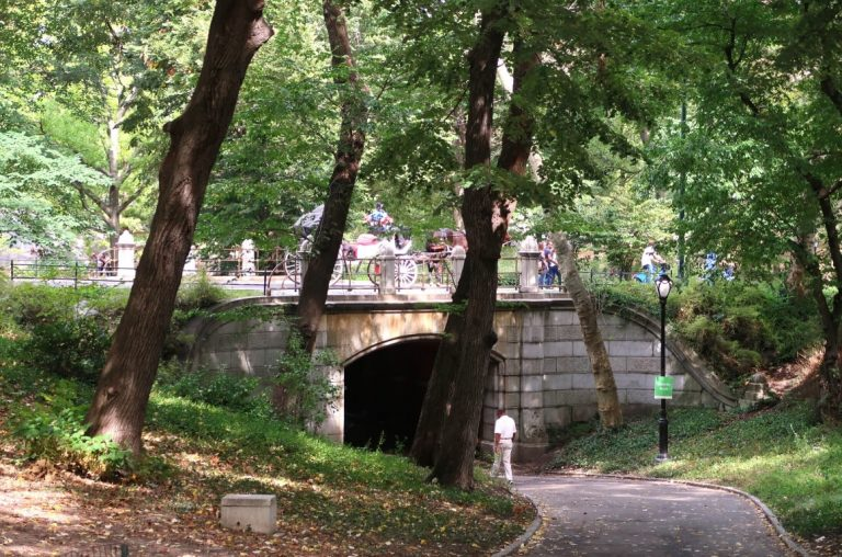 A picture of the famous bridge in Central Park, New York with a horse and carriage traveling over it