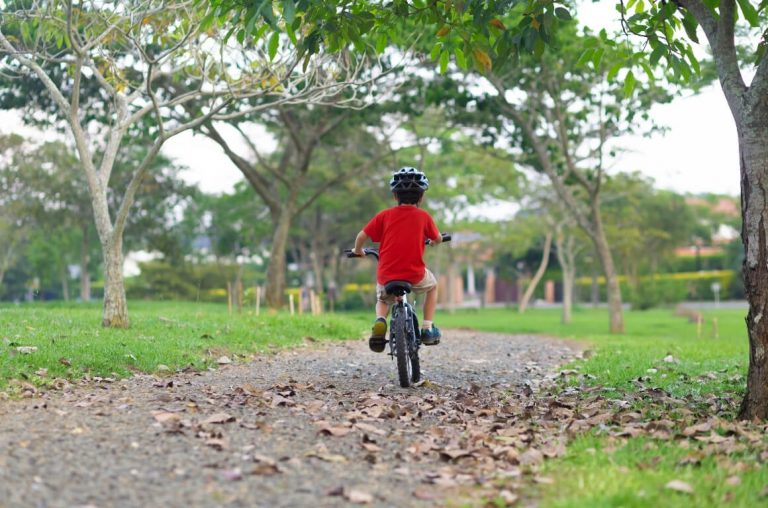 A young boy on a bicycle cycling through a park with trees and grass around him