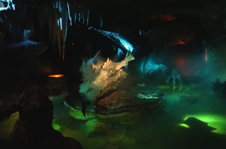 A dark picture of the dragon under the castle at Disneyland Paris