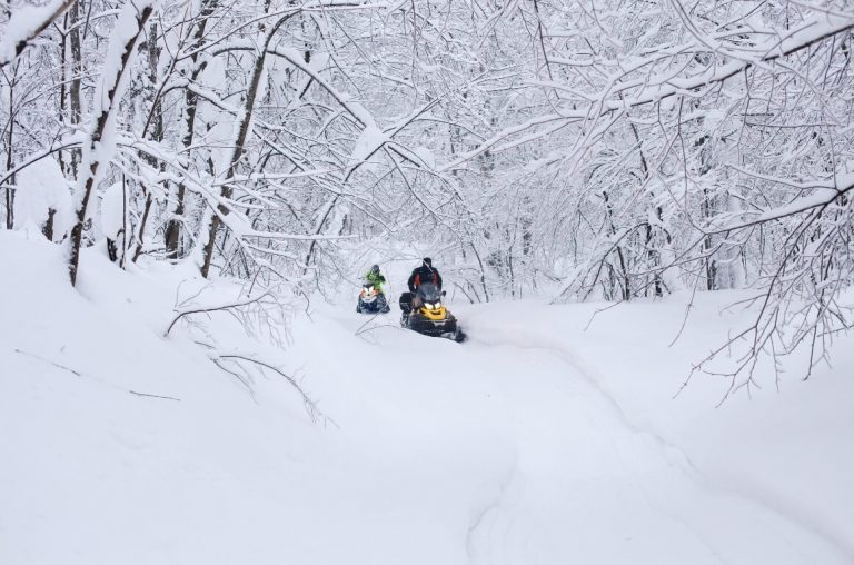 A picture of two snowmobiles in a snowy forest in Lapland
