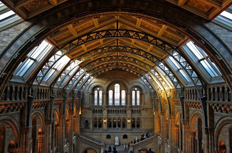 A picture of the ornate ceiling at the Natural History Museum in London.